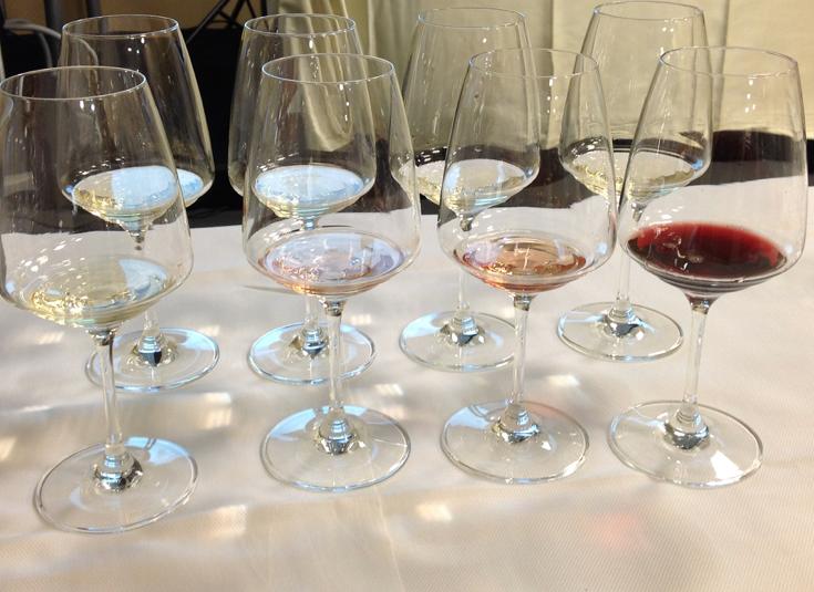 zdravljica wine tasting